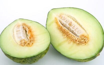 melón biozaki