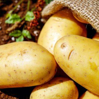 patata biozaki producto local